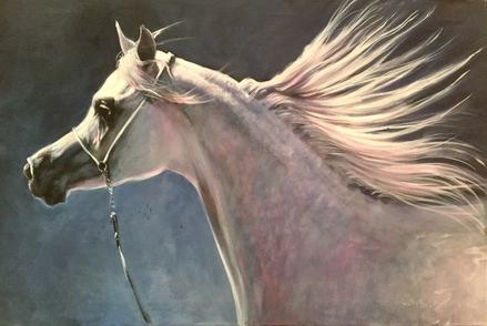 Horse Paintings for Sale