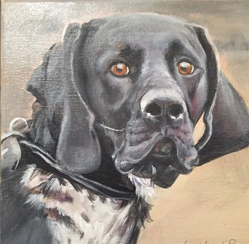 German Pointer Dog Painting