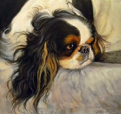 King Charles Dog Portrait